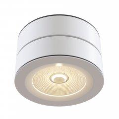 Потолочный светильник Technical C023CL-L20W