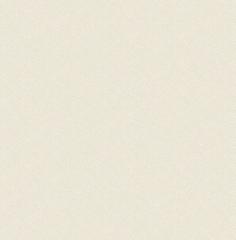 Бумажные обои с акриловым напылением Casa Mia Graphite (RM91505)