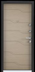 Дверь TOREX SUPER OMEGA 100 Черный муар металлик / ПВХ Дорс светлый горизонт