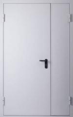 Техническая металлическая двупольная глухая дверь